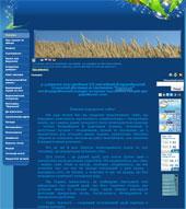 Информационный Web портал с. Боромля